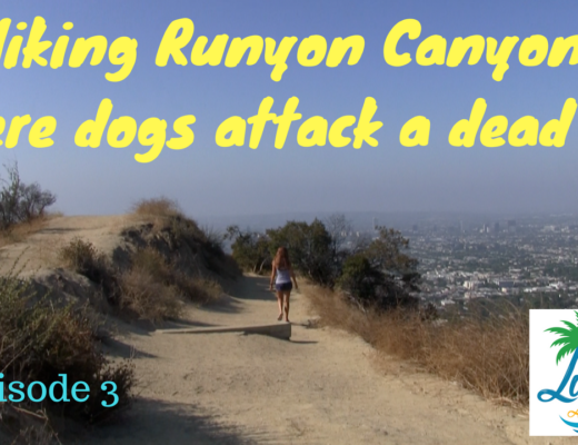 How to Hike Runyon Canyon